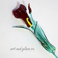 Цветок калла.