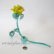 Роза на лапе.